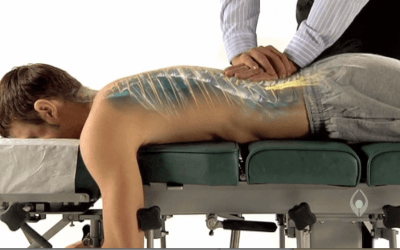 What a Chiropractor Does